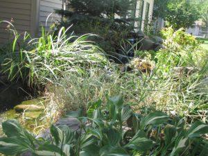 avila gardens