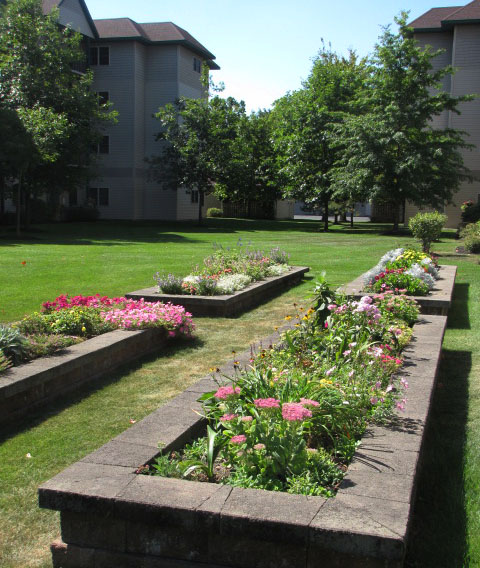 Our residents' flower beds in full bloom.