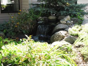 Lodge waterfall and garden area