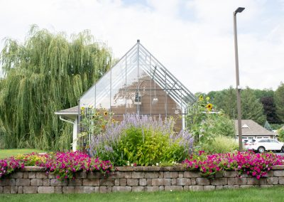 Avila community greenhouse with trailing purple petunias and lavender in bloom